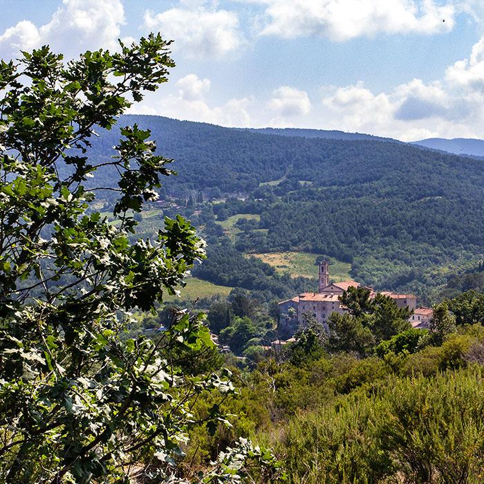 reise-zikaden.de, italy, tuscany, pisa, colline metallifere, sasso pisano - Blick von den geothermischen Feldern auf das Dorf Sasso Pisano in den Colline Metallifere.