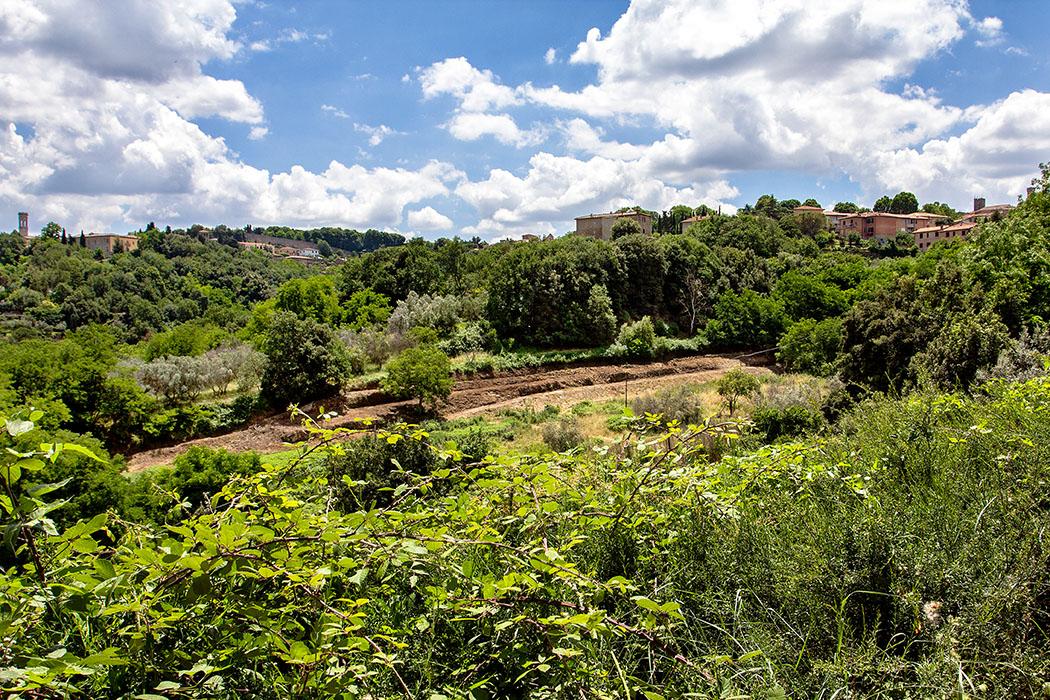 Toskana: Volterra – 14 Sehenswürdigkeiten aus der Zeit der Etrusker - reise-zikaden.de, italy, tuscany, volterra, amphitheatre, vallebuona - Das Amphitheater im Vallebuona von Volterra lässt unsere Freizeit-Forscherherzen höher schlagen. Auf dem Talgrund sind noch im Juni 2018 eindeutige, oval verlaufende Geländestufen sichtbar.
