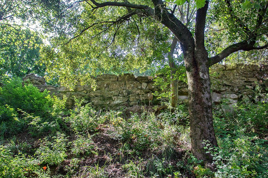 Volterra: Etruskische Stadtmauern an den Klippen der Balze - reise-zikaden.de, italy, tuscany, volterra, borgo san giusto, le balze, etuscan walls - Zu den etruskischen Stadtmauern führt ein Treppenweg hinunter. Dort hat sich dichter Mischwald gebildet, der zwar die Sicht ein wenig verdeckt, aber den von Erdrutschen gefährdeten Untergrund stabilisiert.