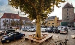 reise-zikaden.de, oberpfalz, regensburg, bayern, donau, alter kornmarkt, herzogspfalz, alte kapelle, roemerturm