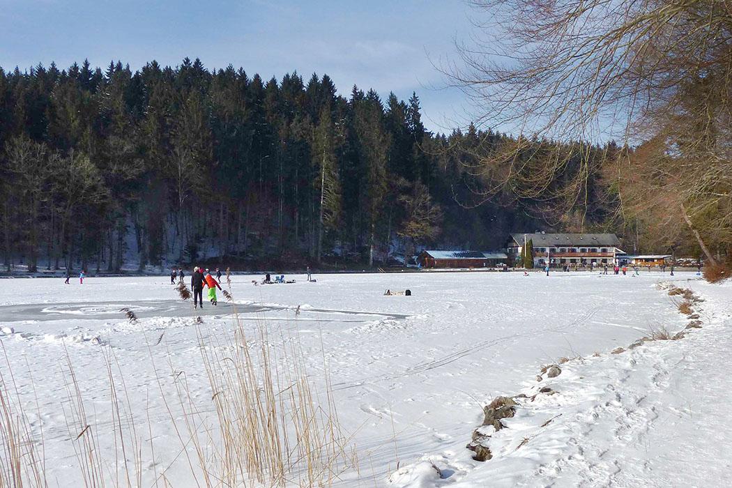Deininger Weiher_winter Ein Winterspaziergang um den Deininger Weiher mit einer Erweiterung ins Deininger Moos ist im Winter eine wunderschöne Rundtour. Von der Ludwigshöhe in der Nähe kann das Alpenpanorama bewundert werden.
