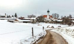 reise-zikaden.de, oberbayern, muenchen, aying, kleinhelfendorf,