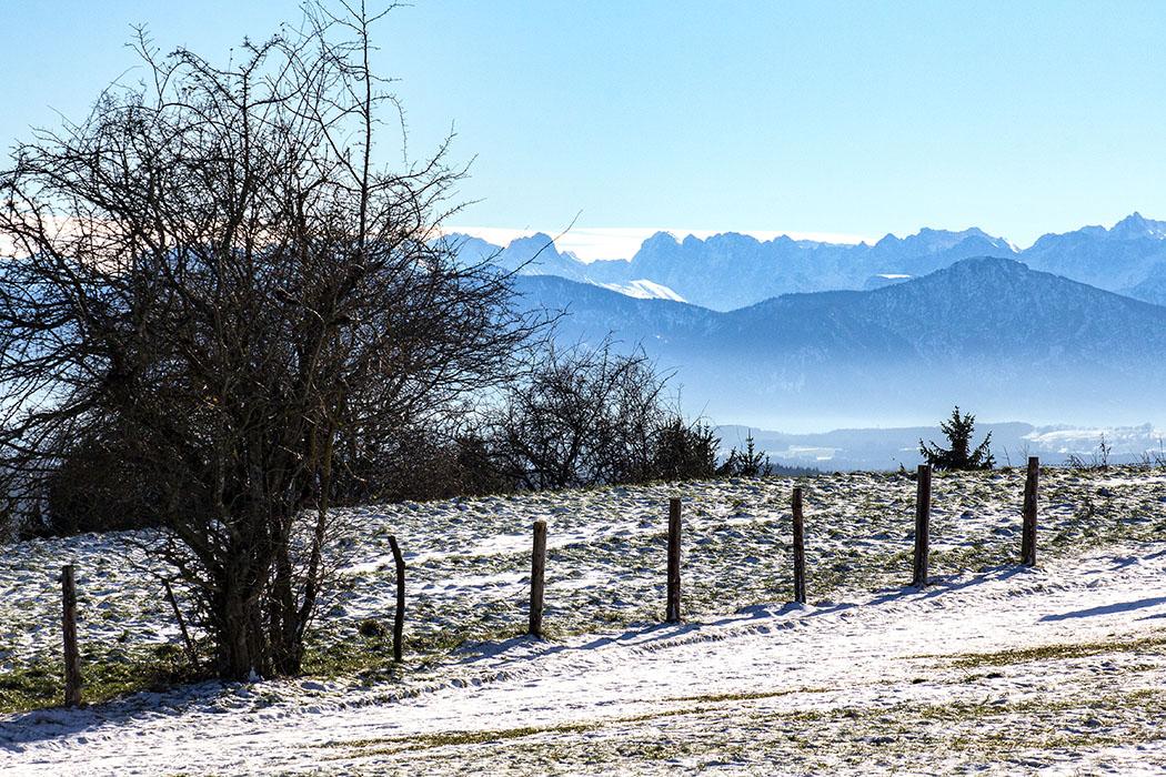 Winter in München & Umgebung: 18 Spaziergänge und Ausflüge - reise-zikaden.de, oberbayern, starnberger see, ilkahoehe, tutzing - Ziel unserer Winterwanderung über den Deixlfurter See und seiner Fischweiher ist die Ilkahöhe bei Tutzing am Starnberger See. Die Aussicht das Voralpenland bis zur Zugspitze und den Chiemgauer Alpen ist fantastisch.