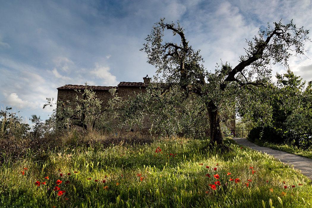 Casa Natale di Leonardo_Anchiano_toskana - In diesem Bauernhaus wurde am 15. April 1452 Leonardo da Vinci geborten. Das Anwesen liegt in Anchiano bei Vinci in der bildschönen hügeligen Landschaft des Monte Albano.