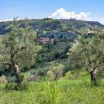 reise-zikaden.de, Italy, Tuscany, Volterra, Monte Nebbio, Badia Camaldulense, San Giusto Nuovo, Chiesa di San Cipriano_titel