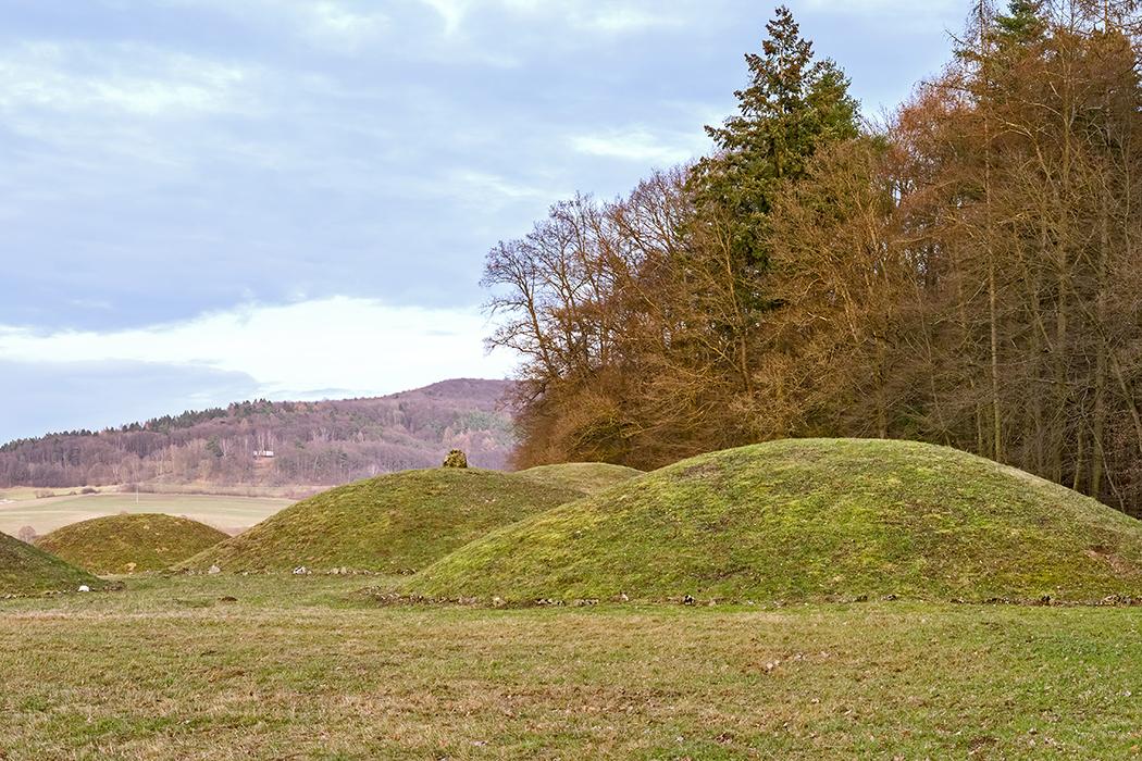 Litzendorf_Huegelgräber Die Abbildung zeigt rekonstruierte Hügelgräber bei Litzendorf om oberfränkischen Landkreis Bamberg. Foto: Wikipedia, Ermell