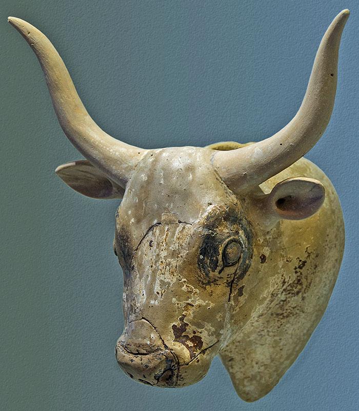 White_Bull's_head_rhyton_archmus_Heraklion_Jebulon Der Kopf eines weißen Bullen aus Gournia diente als Rython für rituelle Zwecke. Das Fundstück aus Terrakotta datiert auf 1.600 - 1.450 v. Chr. und befindet sich im Archäologischen Museum von Heraklion. Foto: Wikipedia, Jebulon
