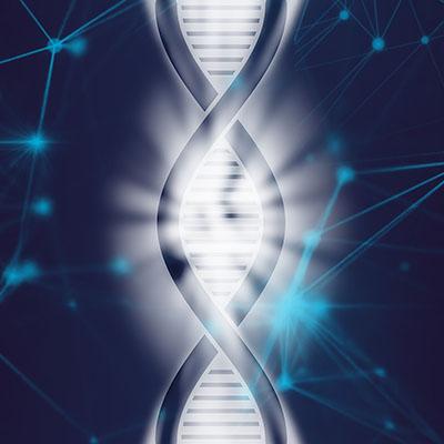 Bronzezeit auf Kreta: DNA-Studien enthüllen die Herkunft der Minoer dna_pixabay Das einsträngige RNA-Molekül im Aufbau der DNA ähnlich. RNA sorgt für die genetische Informationsübertragung, während DNA das Erbgut speichert. Foto: Pixabay