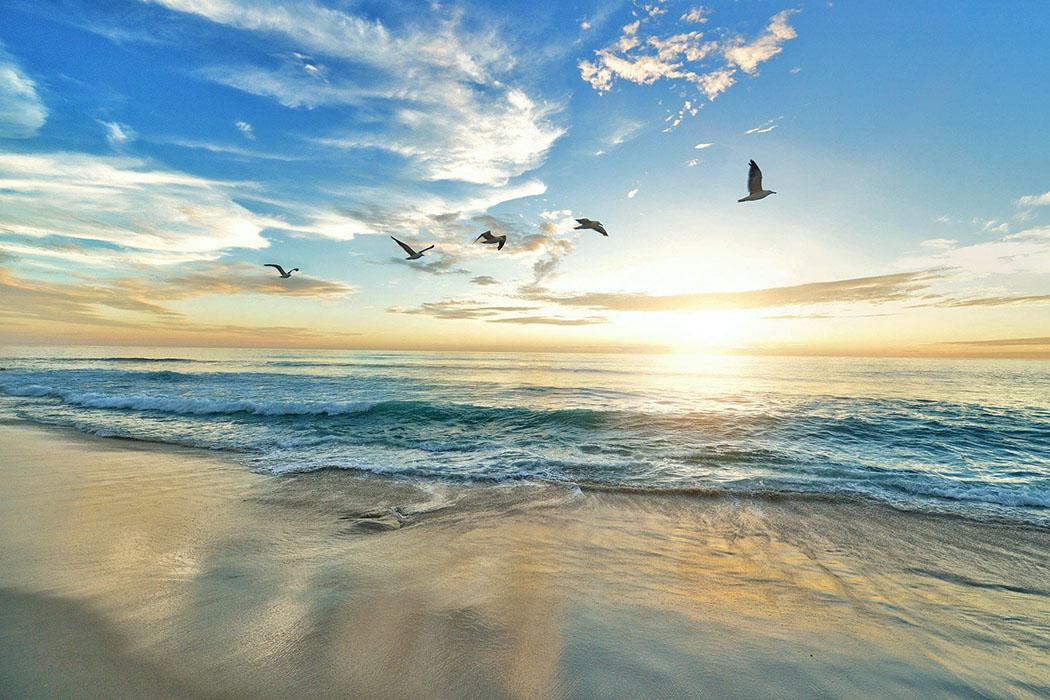 """reise-zikaden.de, Corona-Krise, 88 positive Perspektiven In Zukunft werden """"Urlaub daheim"""" oder abgeschiedenen Reiseziele an Reiz gewinnen. Der Boom mit Kreuzfahrten flaut ab. Foto: Pixabay"""