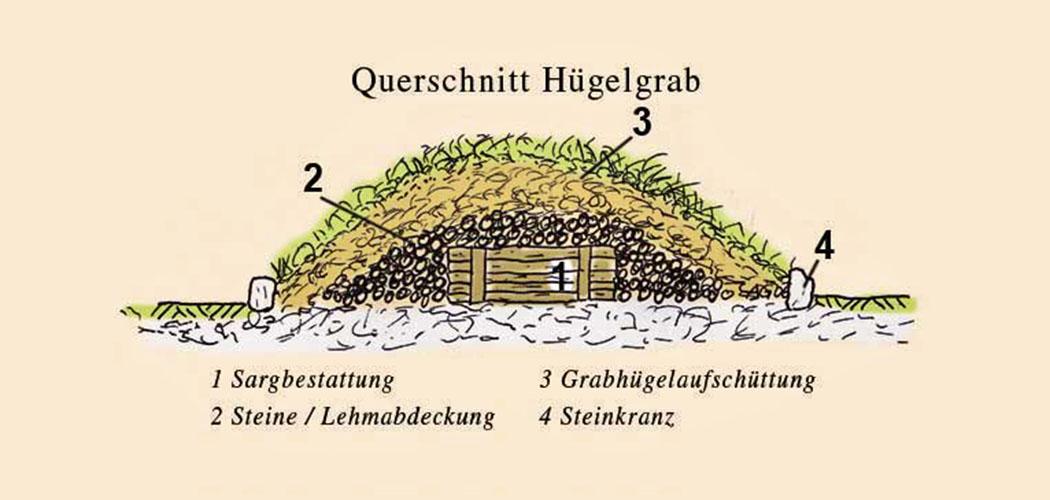 huegelgrab_modell_zeichnung_ol Die Zeichnung zeigt ein keltisches Hügelgrab im Querschnitt. Während der Urnenfelderzeit wurden auch Urnen in der Wallböschungen bestattet. Grafik: www.zeitreise-gilching.de