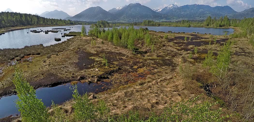 """Kollerfilze, Wasquewhat-ol Drohnenflug über die Kollerfilze bei Nicklheim. Das Areal zählt zum Fauna-Flora-Habitat (FFH) Gebiet """"Moore um Raubling"""" und ist Teil des Europäischen Schutzgebietsnetzes """"Natura 2000"""". Foto: Wikipedia, Wasquewhat"""