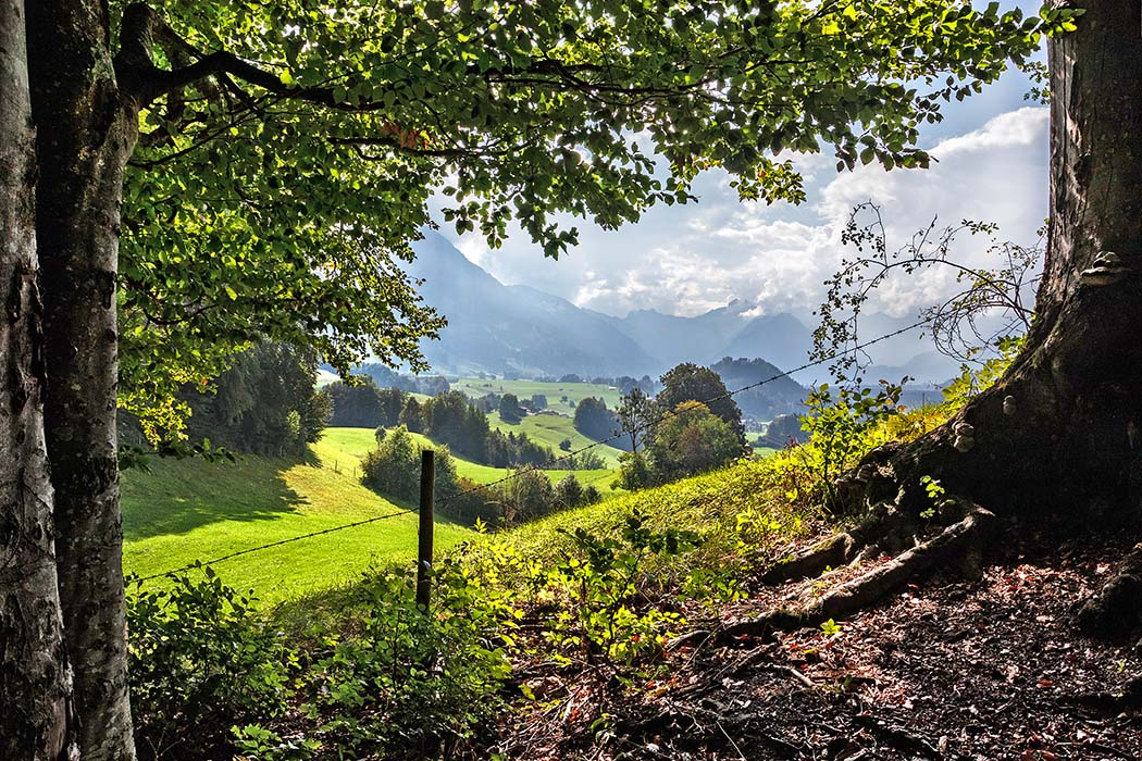 Landlust im Oberallgäu: 10 Genuss-Wanderungen und Ausflüge um Kempten