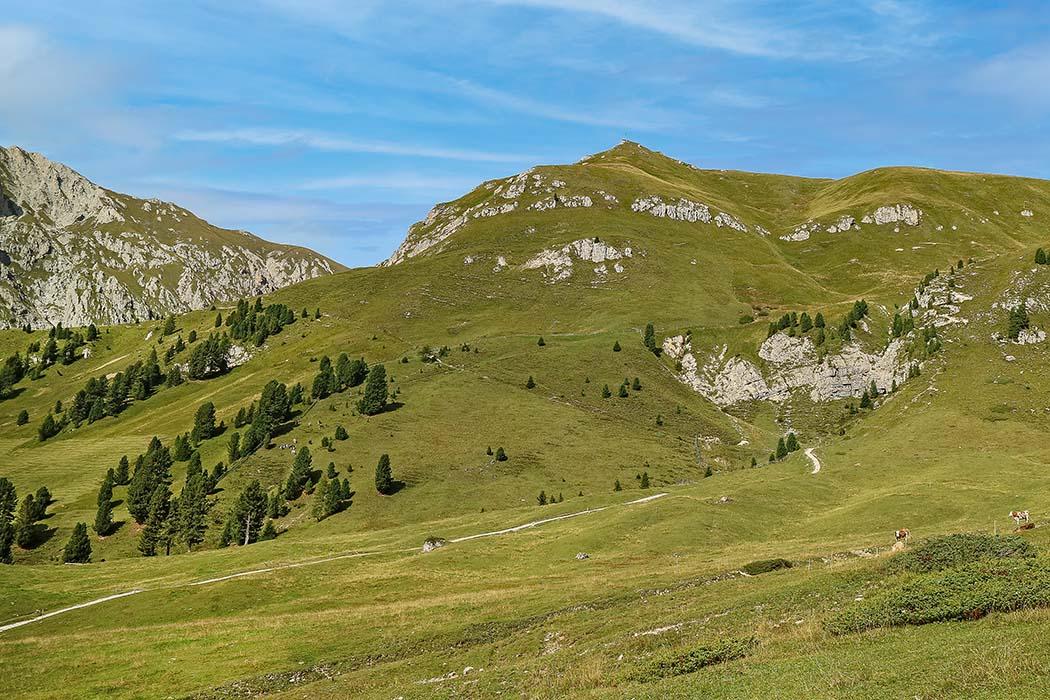 Südtirol: Dolomitental Villnöss – Unsere 8 schönsten Bergtouren, Zendleser Kofel von Südwesten, Peitlerkofelgruppe, Clemens Stockner_ol Unser Ziel ist der Zendleser Kofel (2.422 Meter) in der Peitlerkofelgruppe im Talschluß von Villnöss. Von der Schlüterhütte ist das Gipfelkreuz in etwa einer haben Stunde erreichbar. Foto: Wikipedia, Clemens Stockner