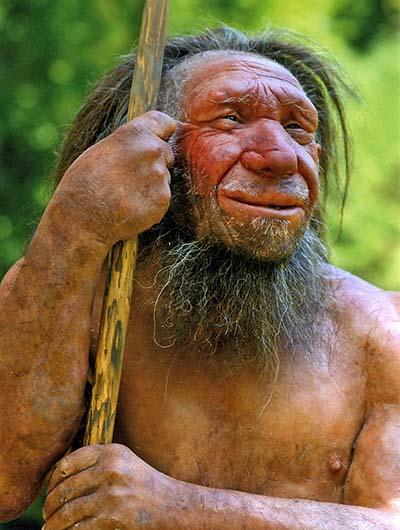 reise-zikaden.de, Altsteinzeit in Bayern: 12 Tourentipps zu Neandertaler-Höhlen Homo sapiens neanderthalensis-Mr. N (Ausschnitt), Neanderthal Mu