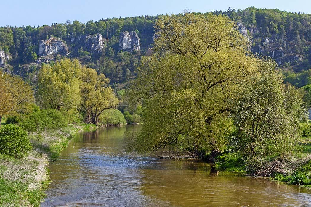 Naturschutzgebiet, Arnsberger Leite, Kipfenberg, Naturpark Altmühltal Neandertaler bevorzugten Höhlen Neandertaler bevorzugten Höhlen in erhöhter Lage und Flussnähe, die ein Wildtier-Beobachtung ermöglichte. Das Foto zeigt die Arnsberger Leite bei Kipfenberg im Altmühltal. Foto: Wikimedia, Derzno in erhöhter Lage in Flussnähe, die eine Beobachtung der Wildtiere ermöglichte. Das Foto zeigt die Felsformation Arnsberger Leite bei Kipfenberg im Altmühltal. Foto: Wikimedia, Derzno