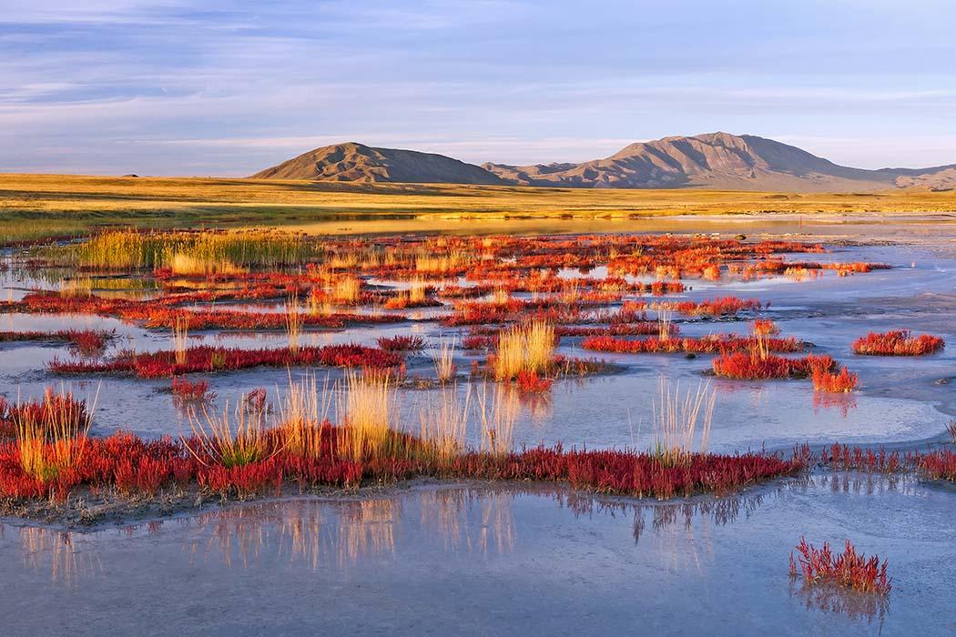 Uws-Nuur-Becken, Tuwa, Russland Reste von Mammutsteppen haben sich im Biosphärenreservat Uws-Nuur-Becken im Süden Sibiriens (Tuwa, Russland) an der Grenze zur Mongolei erhalten. Foto: Wikimedia, Alexander Leshchenko