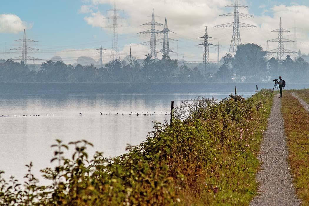 München: Fototour im Vogelschutzgebiet Ismaninger Speichersee